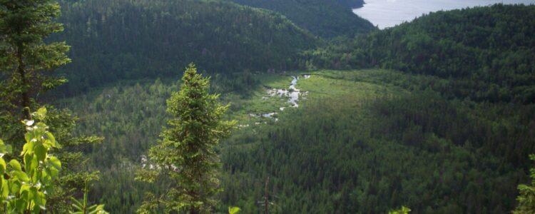Point de vue sur le fjord du Saguenay